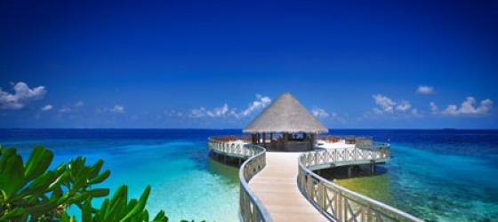 Honeymoon in Maldives |Exotic world Holidays