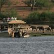 Botswana Safari with Mauritius Honeymoon |Chobe Safari Lodge River Cruise