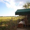 Sango Safari Camp,Khwai Concession
