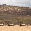 Serengeti-Kati-Kati-View