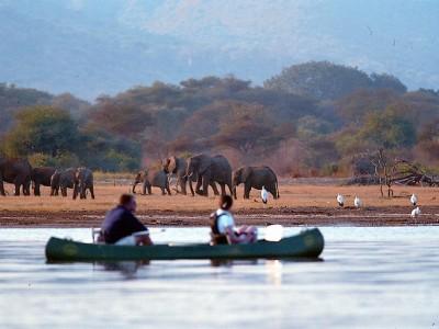 Short Tanzania Safari Tours