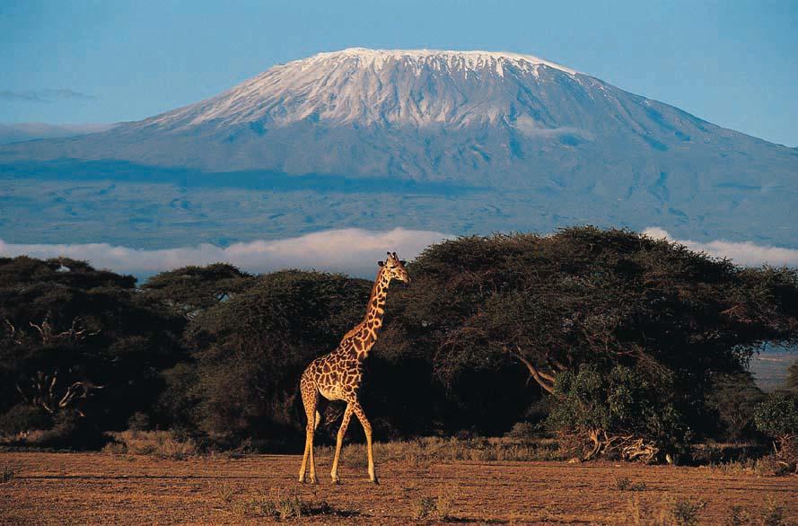 Kilimanjaro Tour Packages